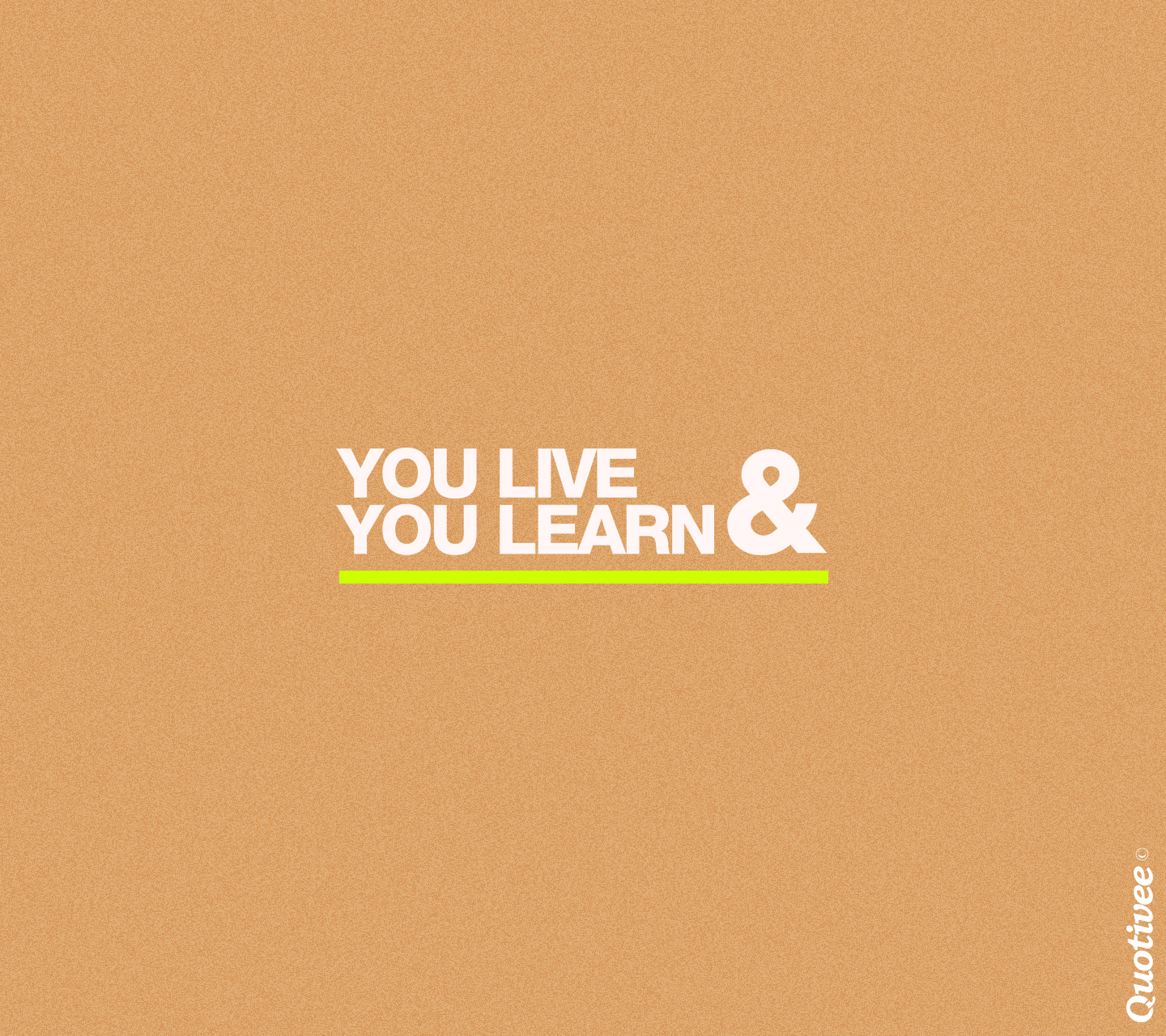 you live and you learn Define you live and (you) learn: —used to say that one has learned something from an experience that is — you live and (you) learn in a sentence.