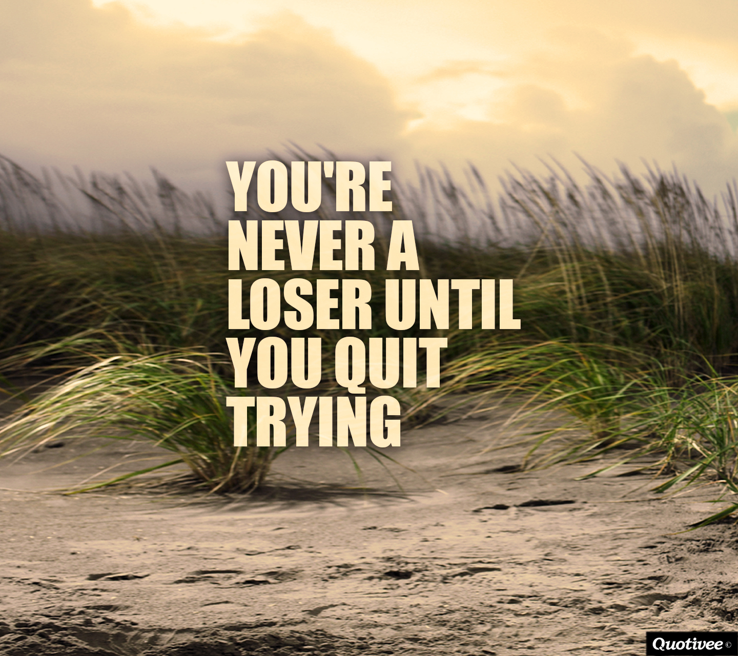 Quotes On Life In Hindi Wallpapers You're Never A Loser U...