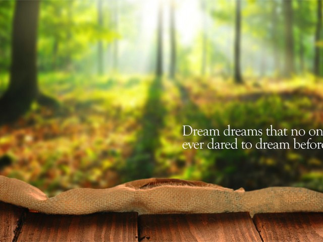 Dream Dreams